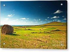 Acrylic Print featuring the photograph Landscape At Summer by Boon Mee