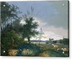 Landscape With A Fox Chasing Geese Acrylic Print by Joseph August Knip