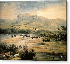 Landscape With Buffalo Ont The Upper Missouri Acrylic Print by Karl Bodmer