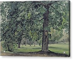 Landscape With Chestnut Tree In The Foreground Acrylic Print