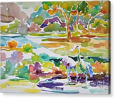 Landscape With Sand Hill Cranes Acrylic Print