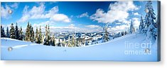 Landscape With Snow Covered Trees Acrylic Print by Boon Mee