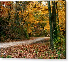 Lane In Fall Acrylic Print