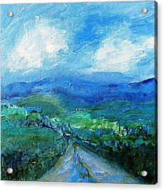 Lane To The Wicklow Hills Acrylic Print by Trudi Doyle