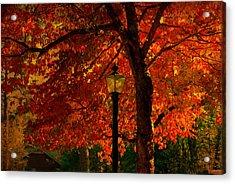 Lantern In Autumn Acrylic Print by Susanne Van Hulst