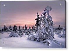 Lappland - Winterwonderland Acrylic Print