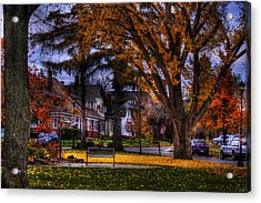 Larchmont-radcliffe Park Acrylic Print by Don Nieman