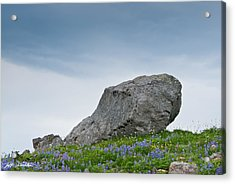 Large Boulder Deposited By A Glacier In An Alpine Meadow Acrylic Print