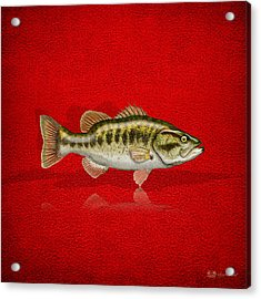 Largemouth Bass On Red Leather Acrylic Print by Serge Averbukh