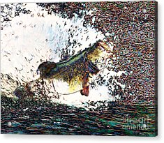 Largemouth Bass P180 Acrylic Print by Wingsdomain Art and Photography