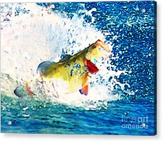 Largemouth Bass - Painterly Acrylic Print by Wingsdomain Art and Photography