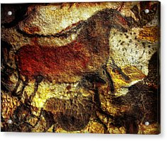 Acrylic Print featuring the photograph Lascaux II No. 1 - Horizontal by Jacqueline M Lewis