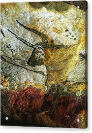 Acrylic Print featuring the photograph Lascaux II Number 3 - Vertical by Jacqueline M Lewis