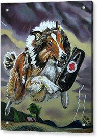 Lassie Acrylic Print