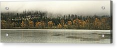 Last Breath Of Fall Acrylic Print