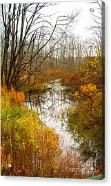 Last Burst Of Color Acrylic Print by A New Focus Photography