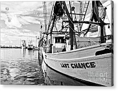 Last Chance Acrylic Print by Scott Pellegrin