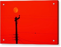 Red Moon Rising Acrylic Print by See My  Photos