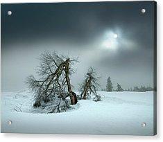 Last Days Of Winter Acrylic Print
