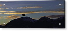 Acrylic Print featuring the pyrography Last Flight Of The Day. by Timothy Latta