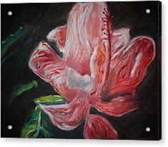 Last Hoorah For Christy Acrylic Print by Andrew Martin