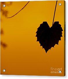 Last Leaf Silhouette Acrylic Print by Joy Hardee