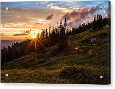 Last Light At Cedar Acrylic Print by Chad Dutson