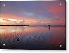 Acrylic Print featuring the photograph Last Light by HH Photography of Florida