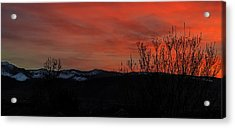 Last Light Acrylic Print by Nancy Marie Ricketts