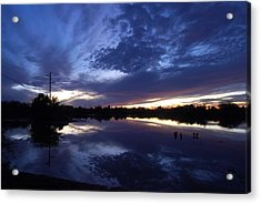 Last Light Acrylic Print by Tam Ryan