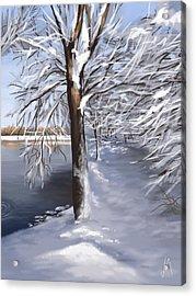 Last Snow Series N2 Acrylic Print by Veronica Minozzi