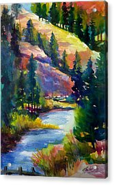 Last View Of The Truckee  Original Sold Acrylic Print by Therese Fowler-Bailey