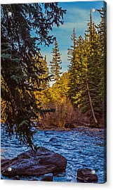 Late Afternoon Along The South Platte Acrylic Print by Mike Schaffner