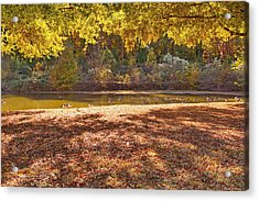 Late Afternoon Autumn Sunshine At The Lake Acrylic Print
