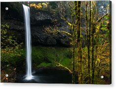 Late Autumn At Silver Falls Acrylic Print