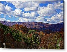 Late Autumn Beauty Acrylic Print by Tom Culver