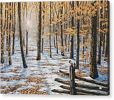 Late Fall Early Winter Acrylic Print