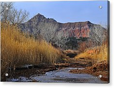 Late Fall In Palo Duro Canyon Acrylic Print