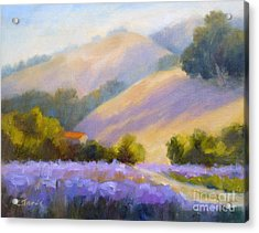 Late June Hills And Lavender Acrylic Print
