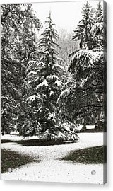 Acrylic Print featuring the photograph Late Season Snow At The Park by Gary Slawsky