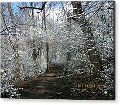 Acrylic Print featuring the photograph Late Season Snow Fall by Eric Switzer