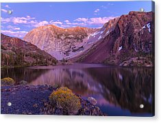 Late Summer Night Dream Acrylic Print