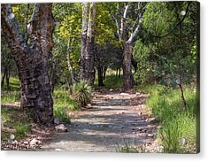 Acrylic Print featuring the photograph Late Summer Solitude by Beverly Parks