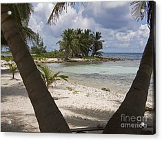 Laughing Bird Caye Acrylic Print