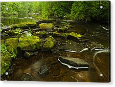 Laughing Fish River Acrylic Print by Thomas Pettengill