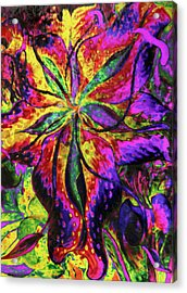 Laughing Lily Abstract Expressionism Acrylic Print