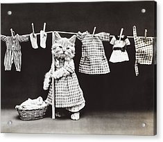Laundry Day Acrylic Print by Aged Pixel
