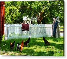 Laundry Hanging On Fence Acrylic Print by Susan Savad