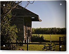 Acrylic Print featuring the photograph Laura Plantation Slave Home by Ray Devlin