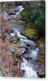 Laurel Creek  Acrylic Print